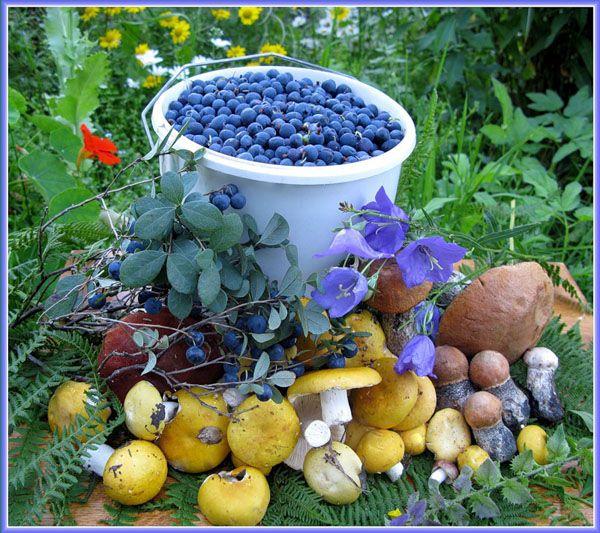 Запеченное в духовке с овощами с фото