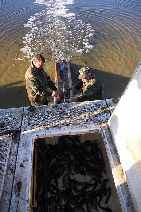 общество рыболовов кбр
