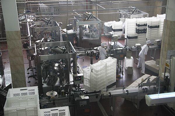 В цехе розлива молочной продукции предприятия кипит работа.