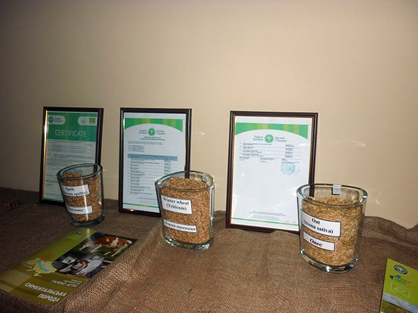 Продукция  растениеводства сельхозпредприятий, входящих в состав компании «Organic Milk»,  имеет экологические сертификаты.