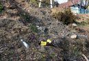 Берег Днепра в Рогачеве завалили мусором