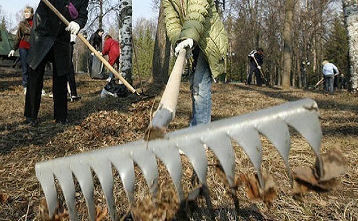 25 марта на Рогачевщине пройдет районный субботник