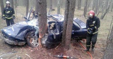 Под Рогачёвом BMW не устояла перед деревом