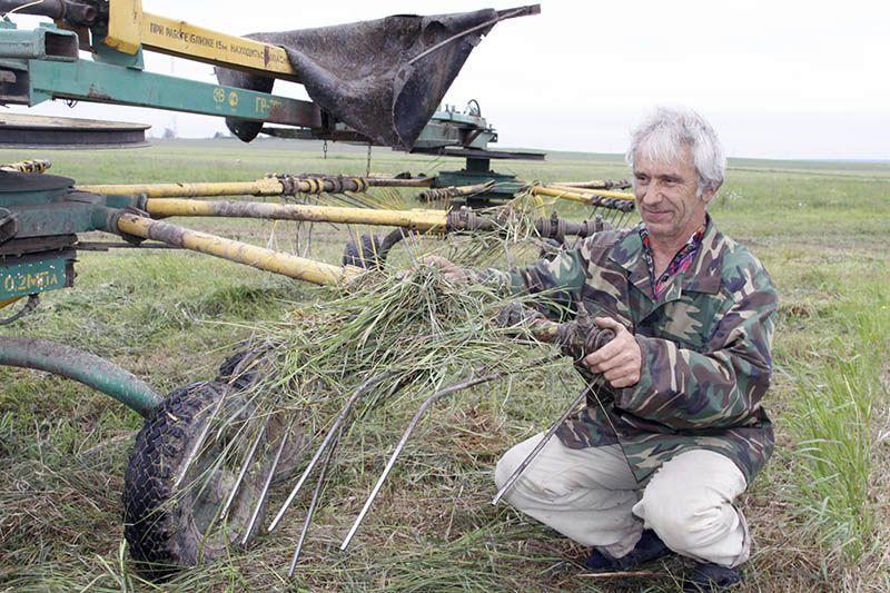 Валерий РАШУК сгребает в валок скошенную провяленную траву.
