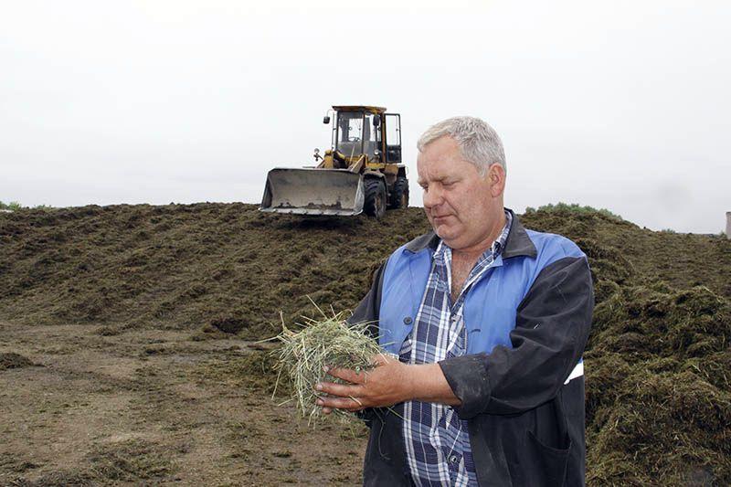 С трамбовкой сенажа успешно справляется Николай БОБКОВ.