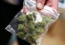 Жителю Рогачевского района грозит до пяти лет лишения свободы за хранение 112 граммов марихуаны