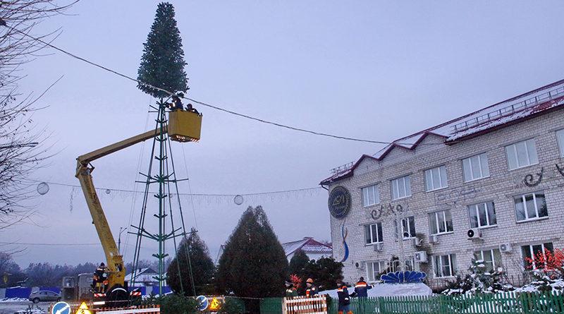 Зелёная красота: в Рогачёве устанавливают ещё одну ёлку