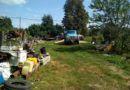 Рогачёвские милиционеры выявили крупные хищения госзерна