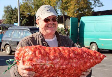 Картофель, свёкла, лук: торговля в Рогачёве шла бойко