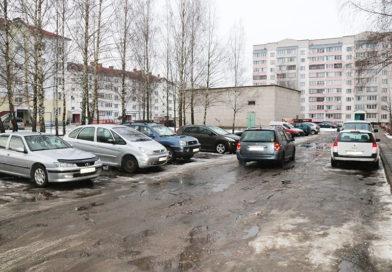 Вывезти мусор и убрать снег:  есть ли проблема во дворах рогачёвских многоэтажек?