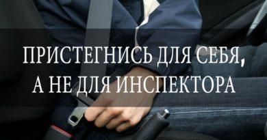 Рогачевские госавтоинспекторы оштрафуют не пристегнутых водителей и пассажиров