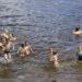 Рейд по рогачёвским пляжам: нарушителей ноль, или Не пойман – не пил