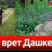 Видеофакт. Как врёт Дашкевич